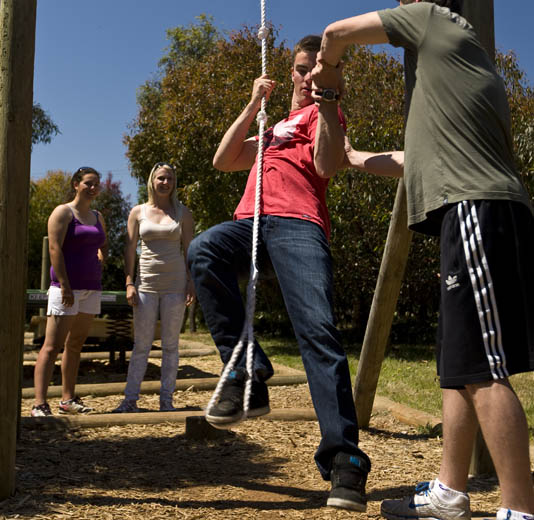 Young Adults on rope swings working as a team